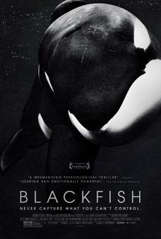 'Blackfish', de Gabriela Cowperthwaite