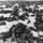 Secretos de Stalingrado