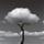 Imprescindibles – Chema Madoz: regar lo escondido