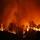 El bosque protector. Incendios forestales: quemar el futuro