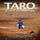Literatura y Escritores (12) 'Taro: El eco de Manrique'