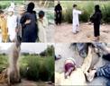 Infancia talibán