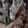 Al descubierto : Guerra en Irak